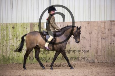 Class 52: Mixed Height Novice Show Hunter Pony