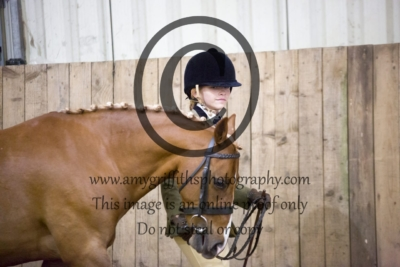 Riding/Hunter Pony Championship