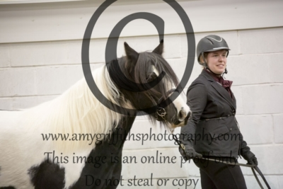 Class 10: Gelding/Stallion