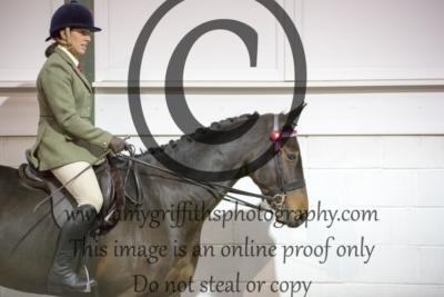 Class 18: Ridden Horse