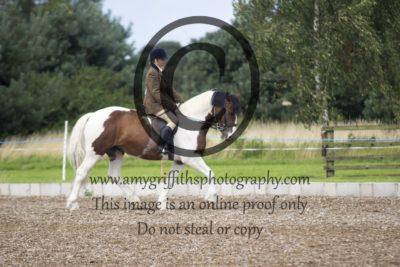 Class 21: Ridden Horse
