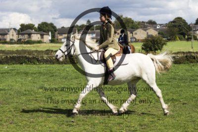 Class 14: Equitation
