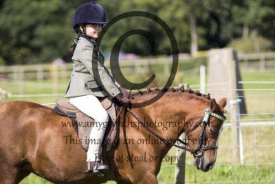 Class 4: Novice Pony