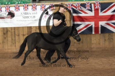 Class 156: Born & Bred in the UK