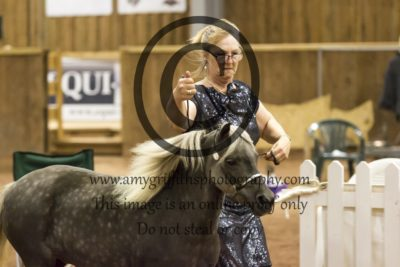 Grand Champion Filly/Mare